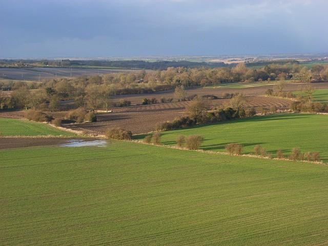 Farmland, Rivar