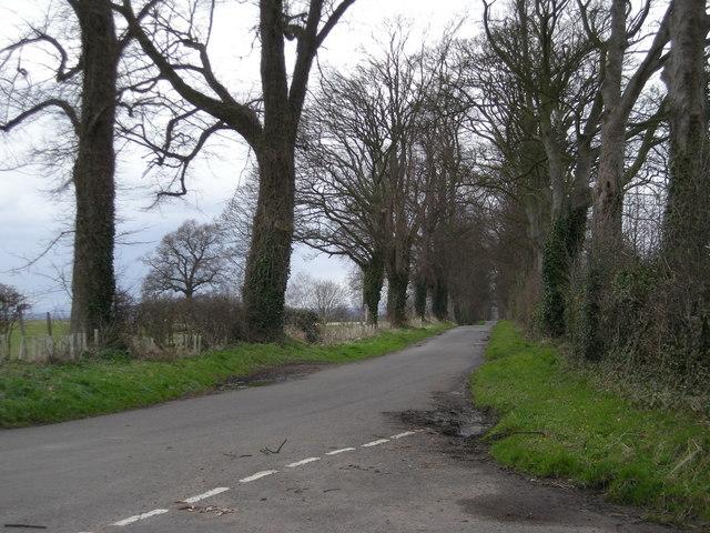 Lane to Watling Street