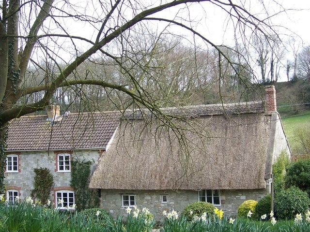 Cottages, Sutton Mandeville