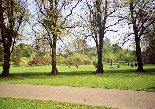 Bute Park on a fine day in Spring