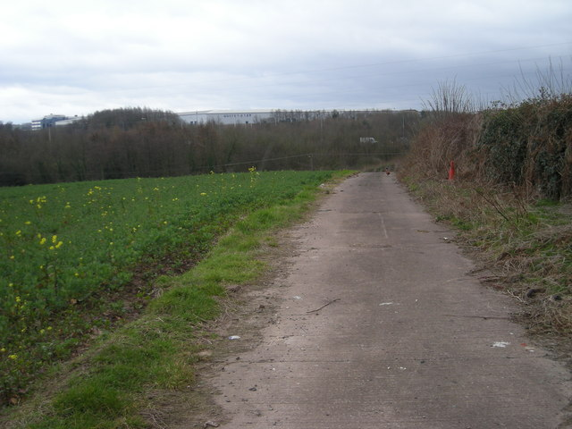Track beside a field of Oilseed Rape