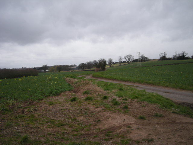 A narrow lane into Telford