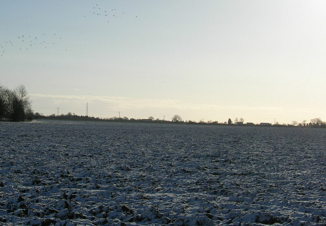 Winter agricultural land