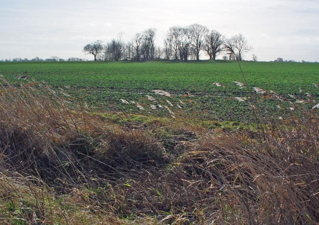 The Langham Plantation