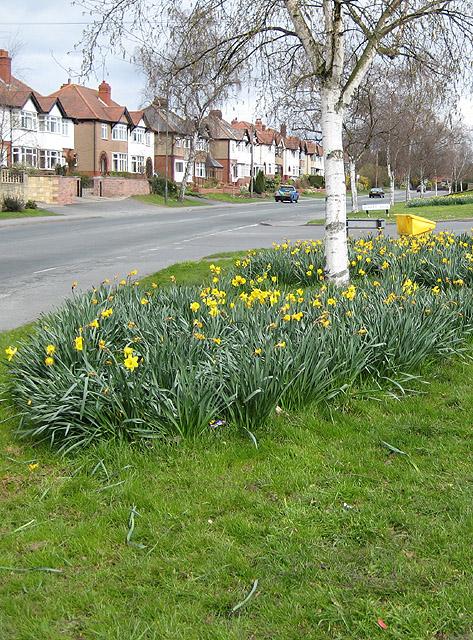 Ledbury Road, Tupsley