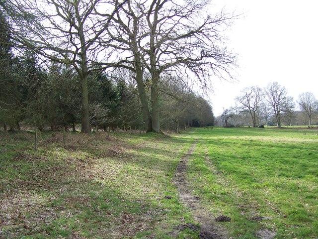 Footpath towards Sutton Row