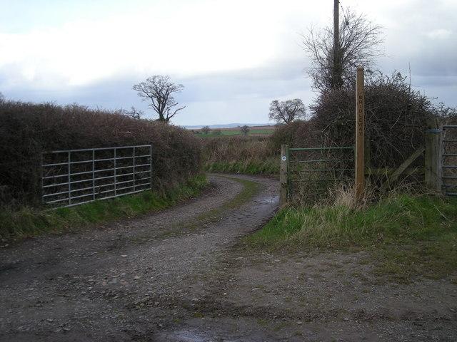 Bridleway to Uppington