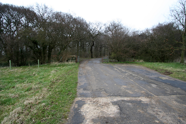 Entrance to Stub Wood