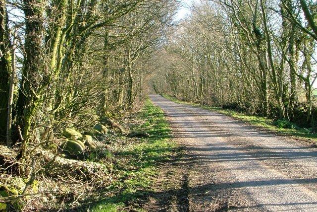 Road to Innerwell Fishery