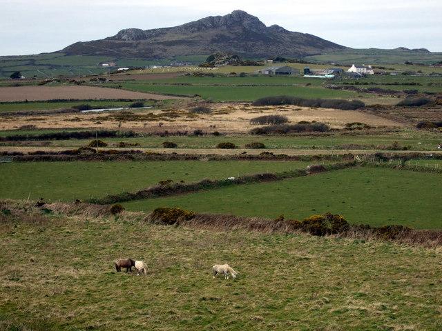 Clegyr Boia, view north