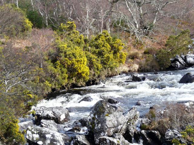 River Culag, Lochinver