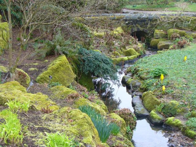 Streamside Garden