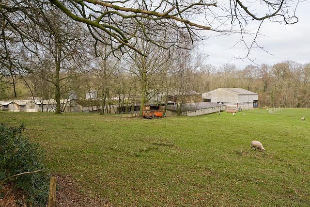 Bracken Farm buildings seen from the east