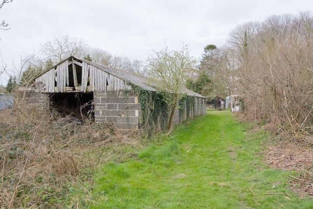 Shed and footpath at Sandown Farm, Landford