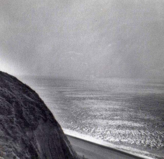 Cliff top, High Peak, Sidmouth, Devon taken in 1959