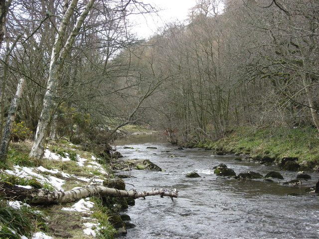 The River East Allen east of The Holms (2)