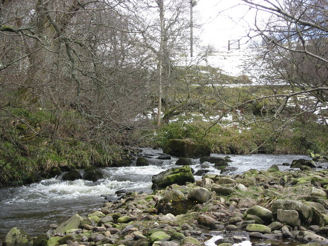The River East Allen east of The Holms (3)