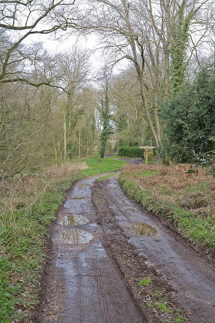 Footpath crossroads near Bracken Farm, Landford