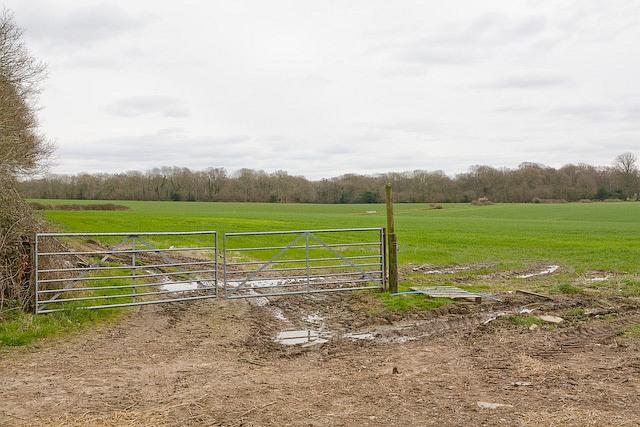 Fields south of Melchetcourt Farm