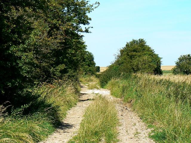 Track near the Imber Range, Salisbury Plain