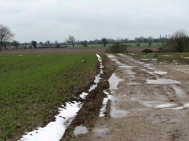 Soggy farm track leading west
