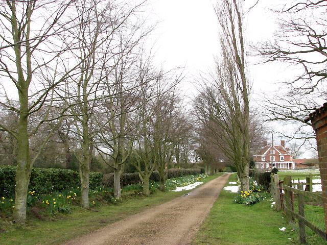 Driveway to Blacksmiths Farm