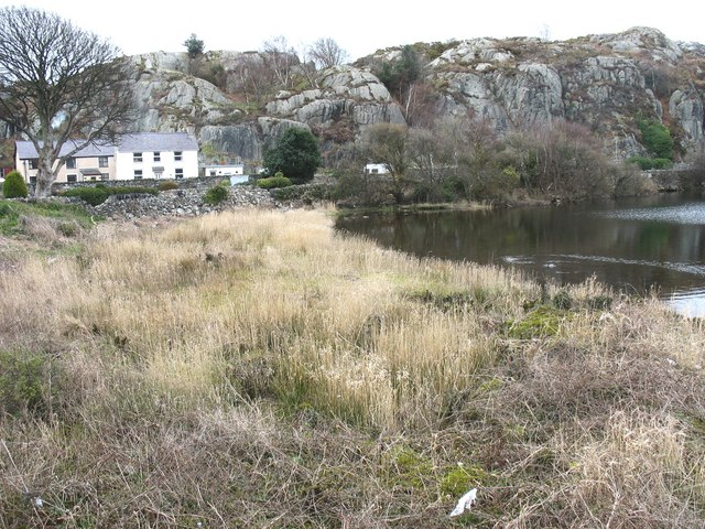 Lacustrine marsh at Pen Llyn