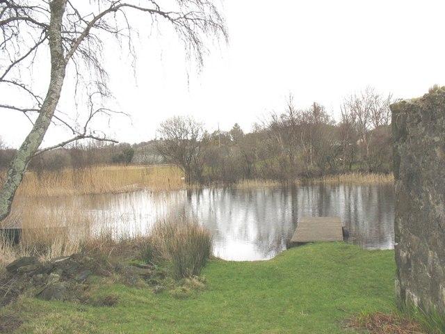 Afon Rhythallt below Pont Penllyn