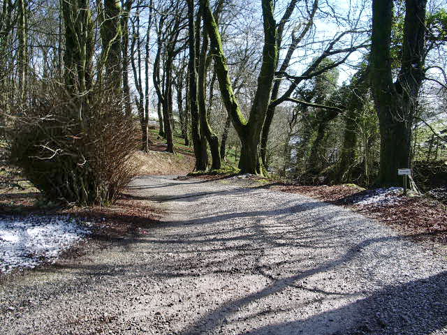 Access road to Dunnow Hall