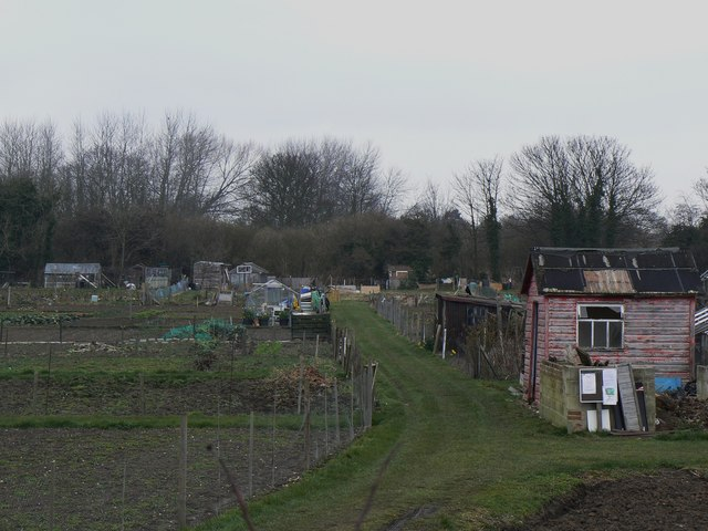 Track into allotments