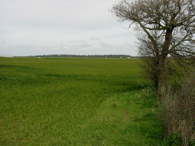 View across the fields from Alland Grange Lane