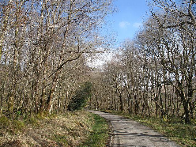 Glen Creran road