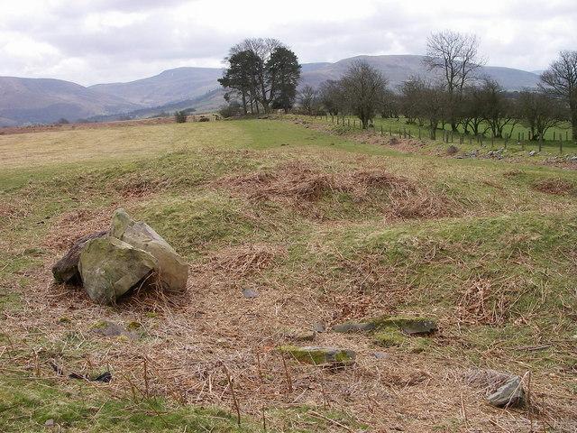 Disturbed corner of Mynydd Illtud common