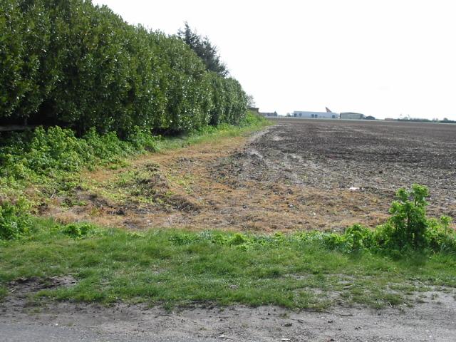 Field boundary, looking towards Manston