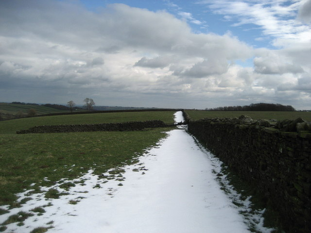 Fields above Padside