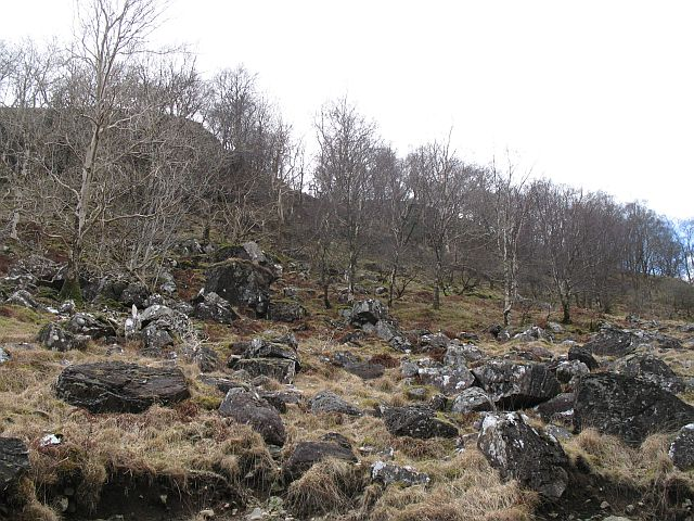 Woodland, Glen Ure
