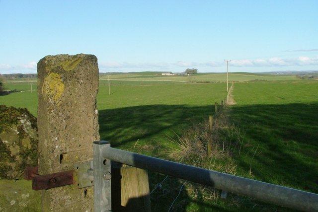 Across the Fields to Orchardton Farm