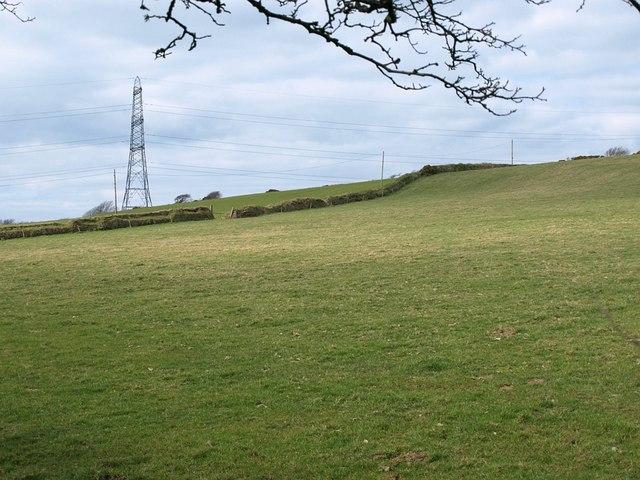 Field near Hendraburnick