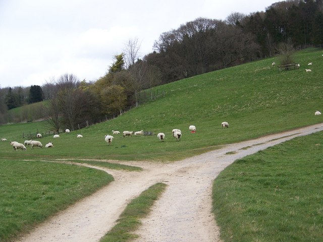 Track junction, Manor Farm, Rockbourne