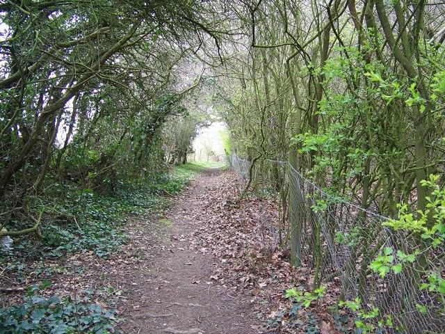 Footpath to St Andrew's Church, Rockbourne