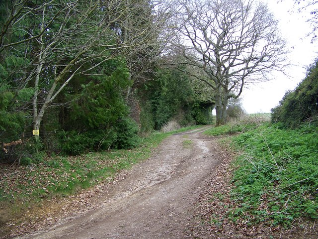 Footpath to Whitsbury