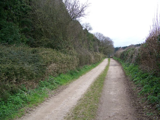Track from Manor Farm to Whitsbury Cross