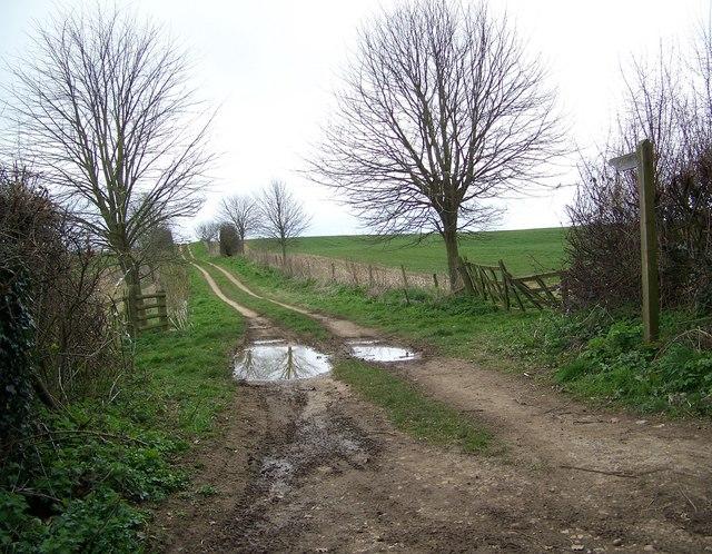 Footpath to Rockbourne