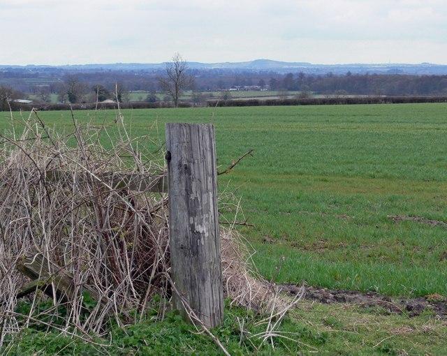 Farmland near Norton-Juxta-Twycross