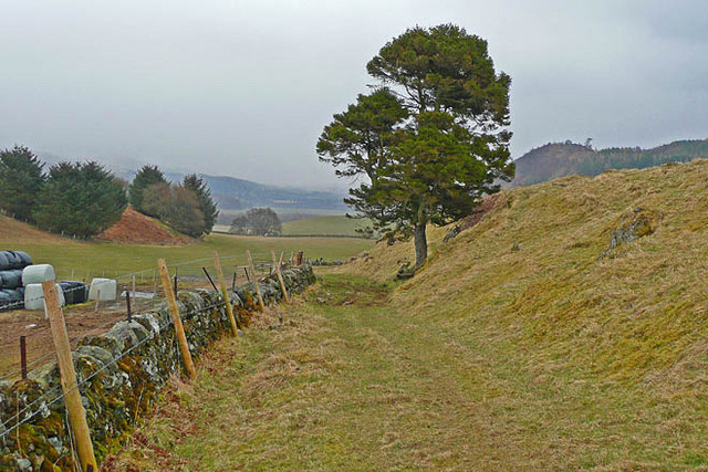 The Bogton Braes path at Drummond Earnoch