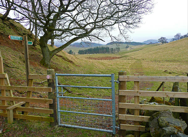 Gate and stile on the Bogton Braes path