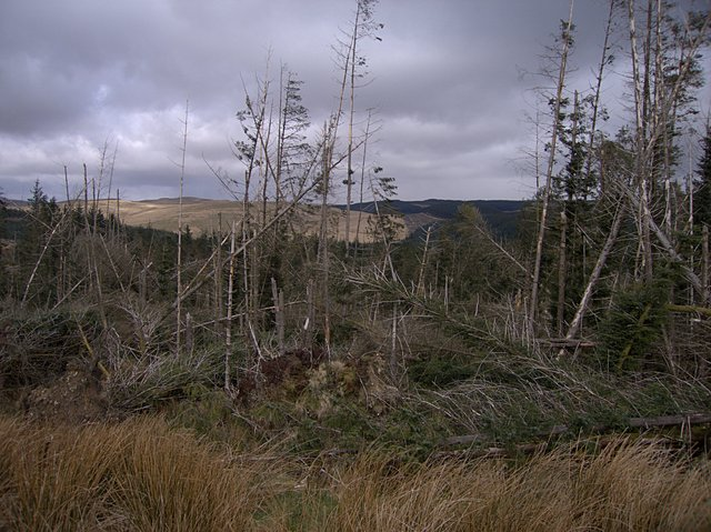 Storm damage at the head of Cwm Nant Melyn