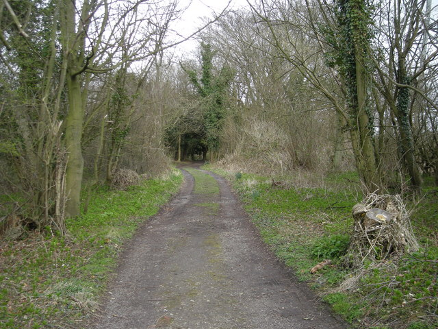 Footpath along Benthall Edge