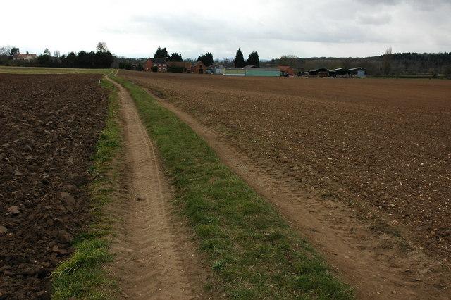 Arable land at Pensham