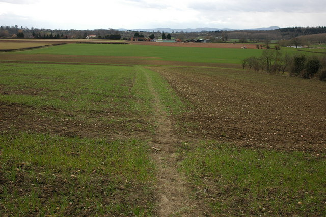Footpath to Pensham
